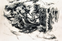 'WALDVERSCHLUCHTUNG', 2002, charcoal on paper